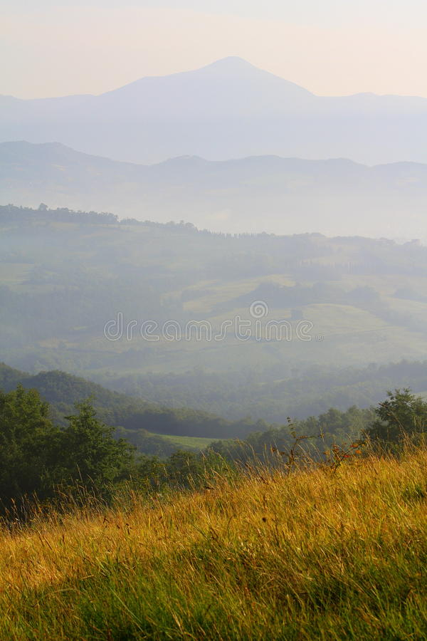Field in Umbria royalty free stock images