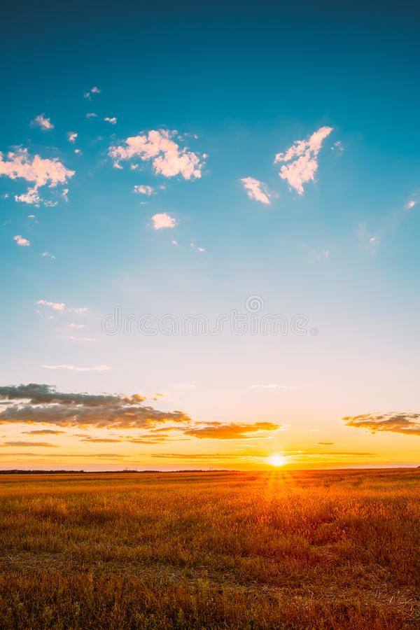 Field Under Scenic Summer Dramatic Sky In Sunset Dawn Sunrise. Landscape Of Field Under Scenic Summer Dramatic Sky In Sunset Dawn Sunrise. Skyline stock photos