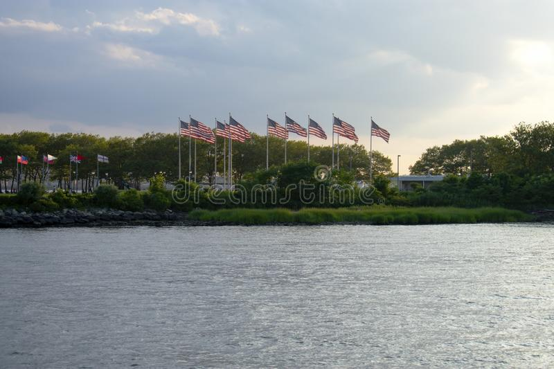 Field of US Flags -03 stock photography