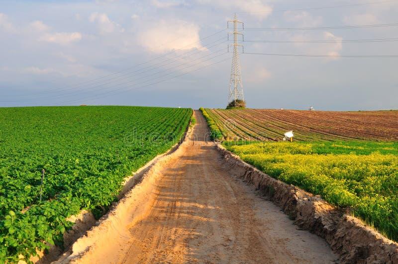 Download Field way. stock image. Image of insulator, road, pylon - 18862381