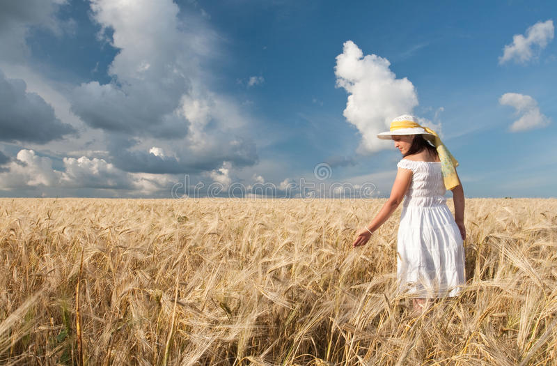 Download Field of wheat stock image. Image of crop, field, agriculture - 15404099