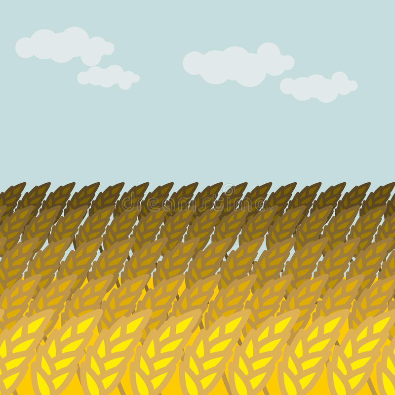 Field of wheat. Grain field and blue sky. Rye Spikes stock illustration
