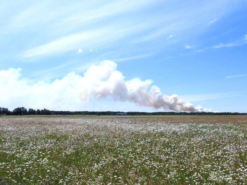 Field and fire in Aukstumale swamp, Lithuania stock image