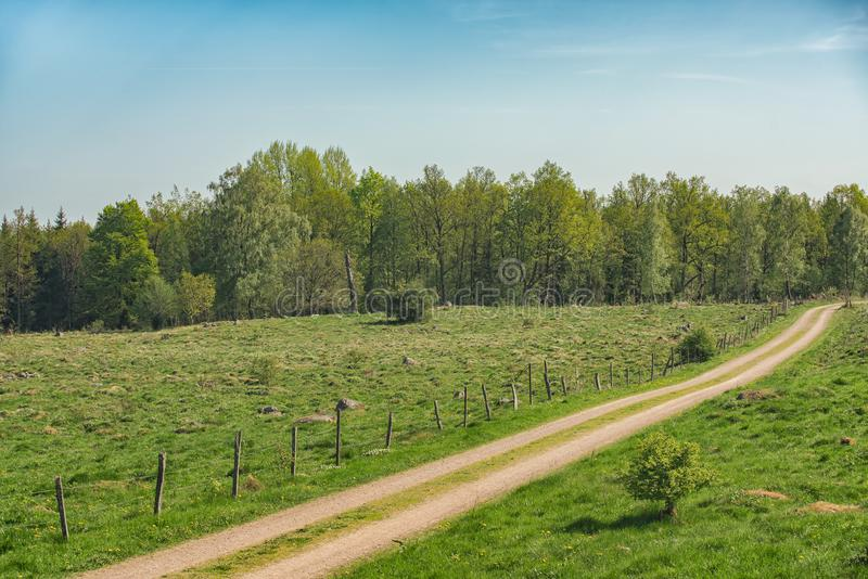 Field winding road through the green meadow royalty free stock image