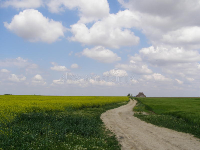Field winding way royalty free stock images