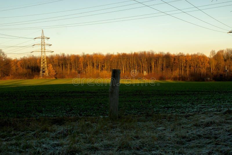 Field in winter evening light. In Bochum, Germany stock image