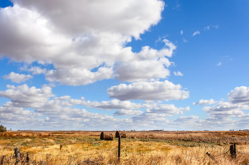 Field of yellow grass, haystacks, lush white clouds, blue sky, g stock photos