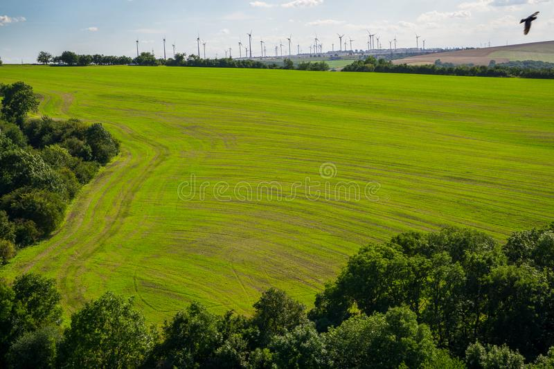 Field with young crops with wind turbines in the background, framed by forest royalty free stock photography