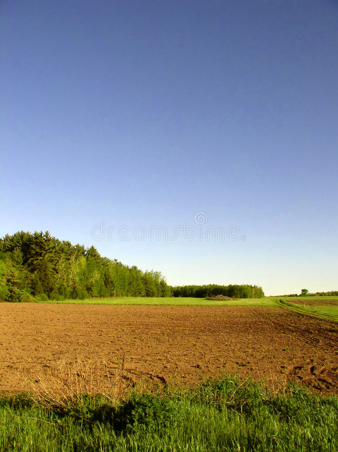 Download Fields Royalty Free Stock Photo - Image: 4915