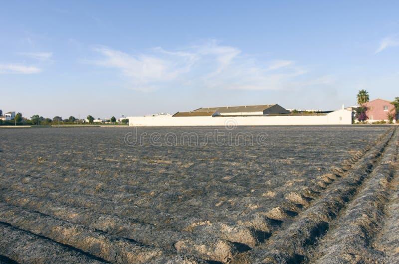 fields stockfotografie