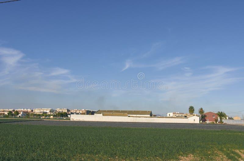 fields stockfoto