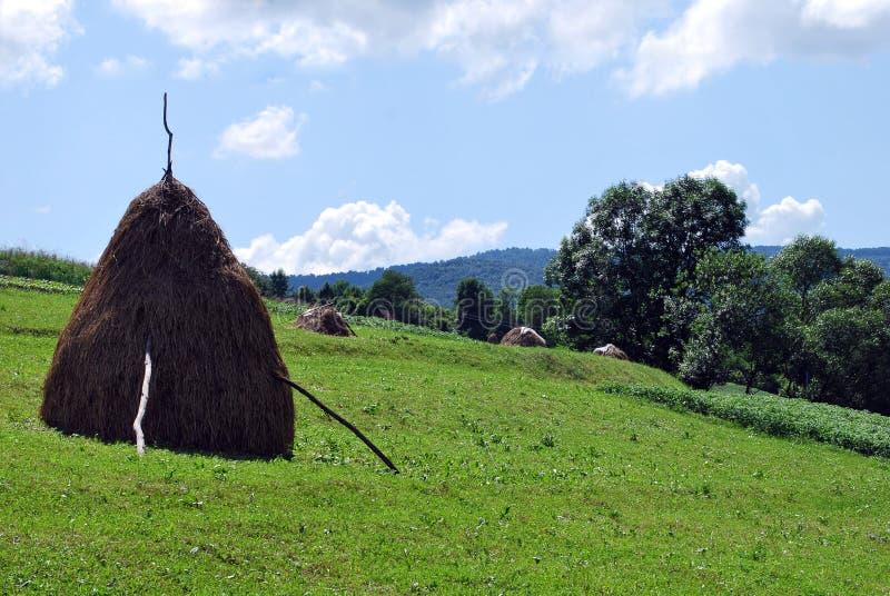 fields berg royaltyfri foto
