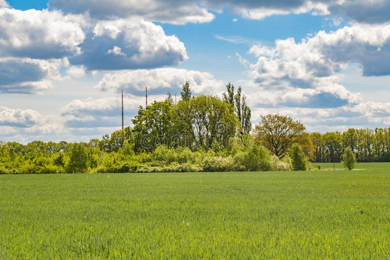 Fields at the city boundary between Berlin and Brandenburg, Germany. Over the landscape, white clouds can be seen in a bright blue sky stock photos
