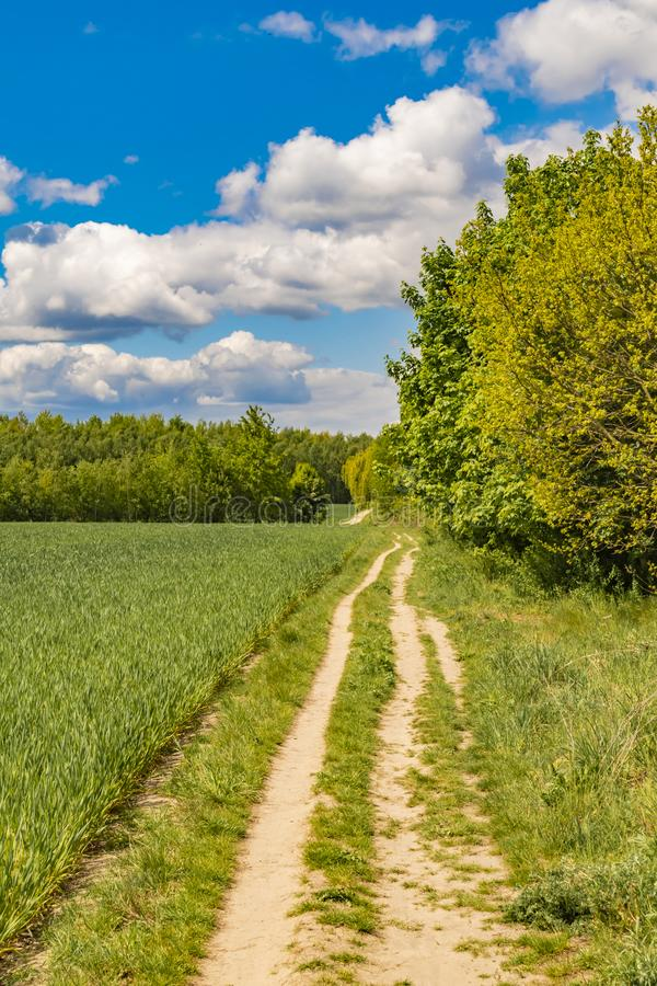 Fields at the city boundary between Berlin and Brandenburg, Germany. Over the landscape, white clouds can be seen in a bright blue. Sky. Between fields and stock photos
