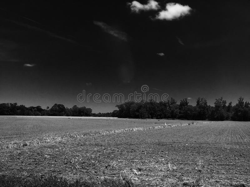 Fields royalty free stock image