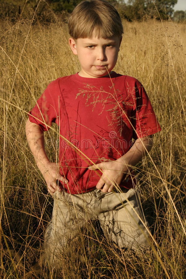 In fields of gold. Confident boy standing in golden field stock image