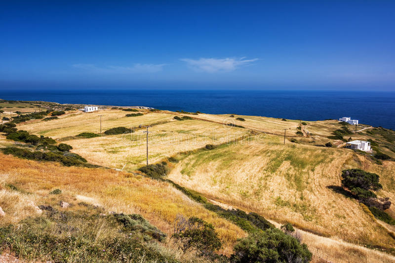Fields of gold, Greece royalty free stock image