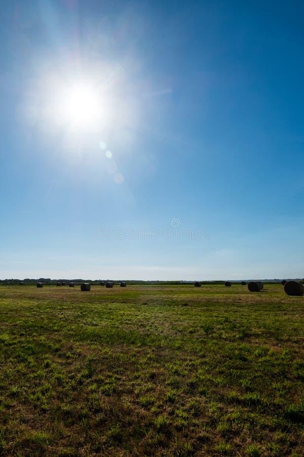 fields harvesting Åkerbrukt fält med den ljusa solen i himlen arkivfoto