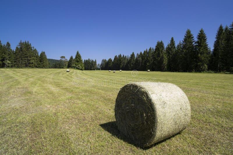Download Fields harvesting стоковое изображение. изображение насчитывающей аграрным - 41659751