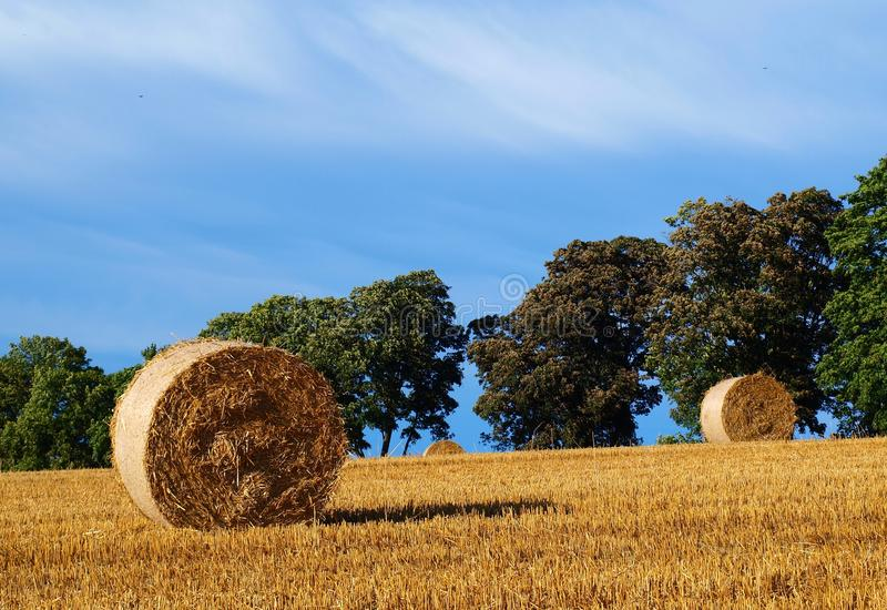 Fields with hay bales royalty free stock photos