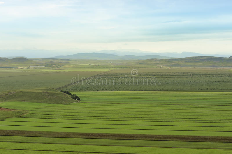 Fields Of Iceland Stock Photo