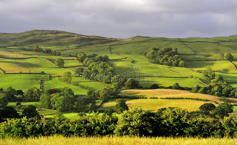 Download Fields And Meadows, Cumbria Stock Images - Image: 23858304