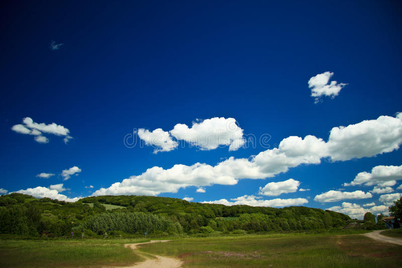 Fields and meadows of rural Denmark stock images