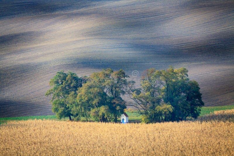 fields moravian royaltyfria bilder
