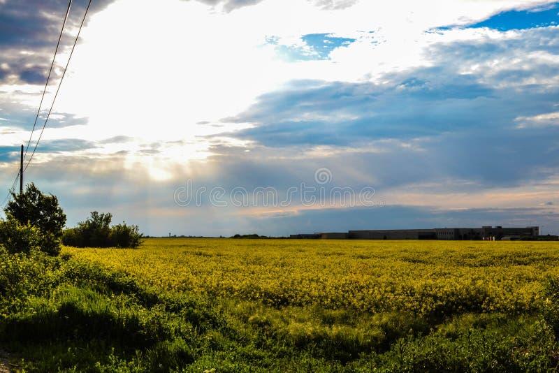 Fields and sky stock photos