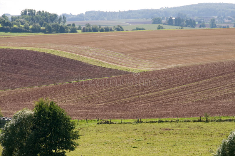 Download Fields on the slopes. stock photo. Image of arable, green - 16153800