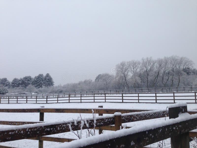 Fields of snow stock image