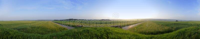 fields sommar royaltyfri foto