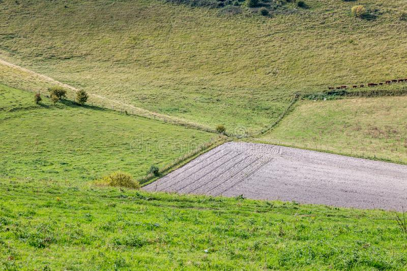 Fields in Sussex during late summer royalty free stock photos