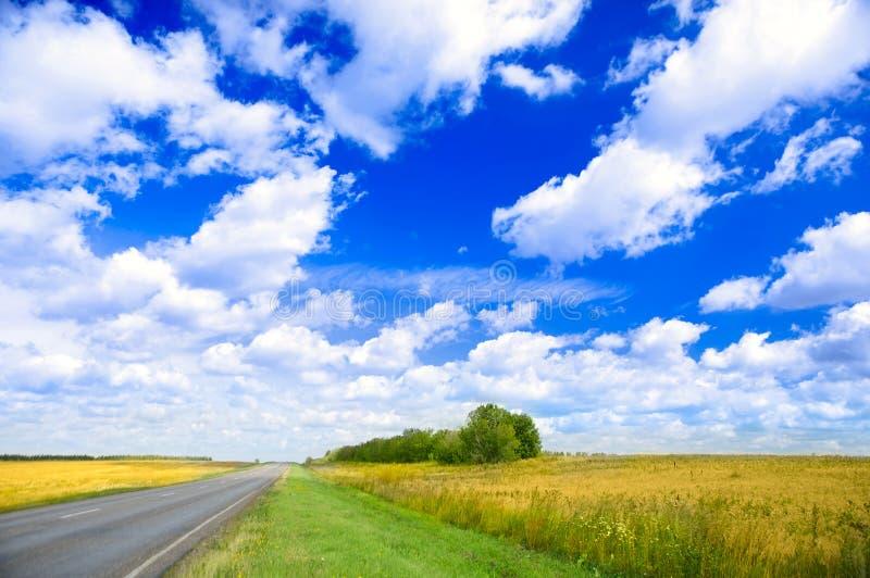 fields vägen arkivbilder