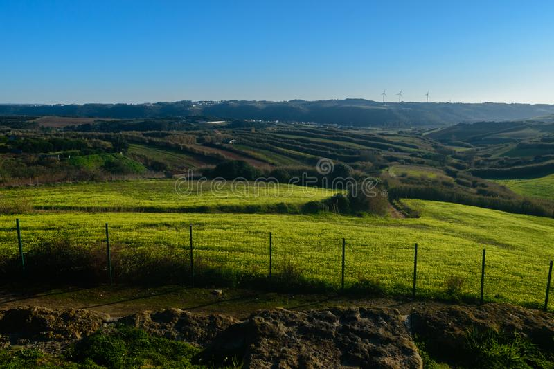 Fields with yellow flowers and aerogenerators background, Barril - Mafra, Portugal stock photography