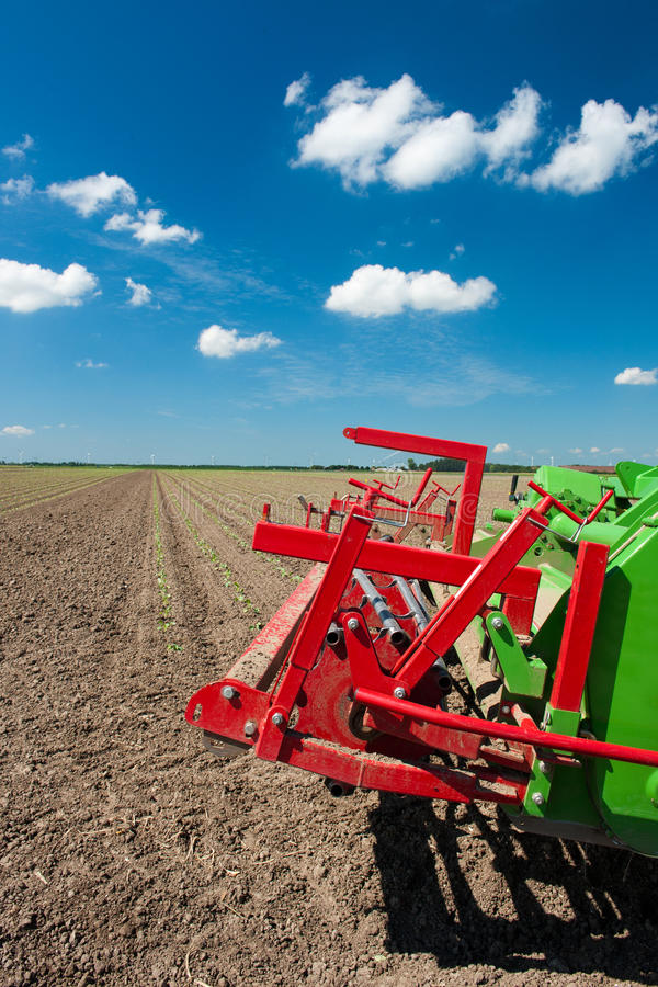 Fields with young vegetable plants. Fields with young vegetable fields and detail of planting machine stock images