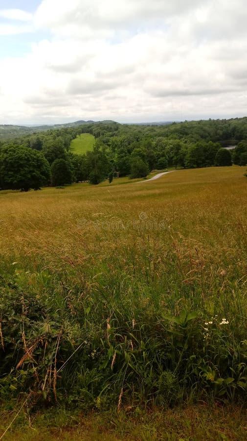 Fieldscapes foto de stock royalty free