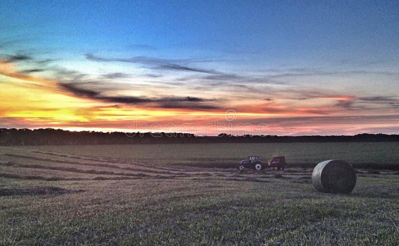 Fieno pressato al tramonto fotografie stock libere da diritti