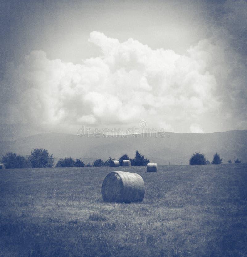 Fieno in un campo in bianco e nero immagini stock libere da diritti
