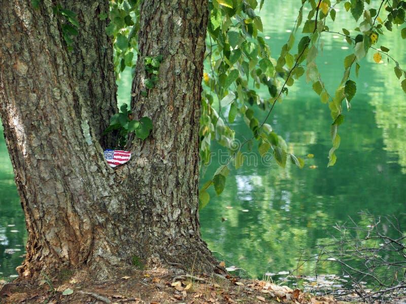 Fierté américaine par l'étang photographie stock