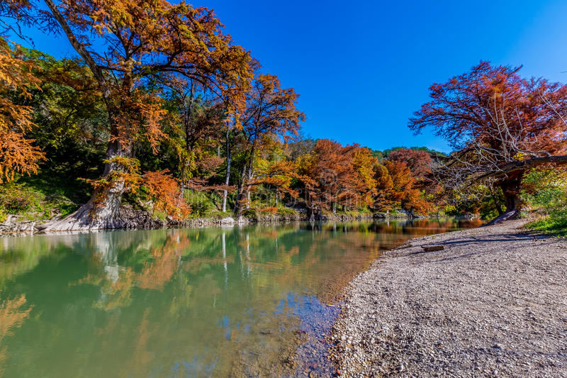 Fiery Fall Foliage at Guadalupe River State Park, Texas. Fiery Orange Fall Foliage on the Guadalupe River in Texas. Blue skies and gravel river banks stock images