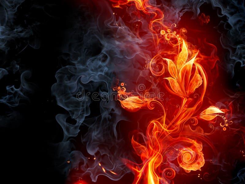 Fiery flower. Fiery background. Series of fiery illustrations vector illustration