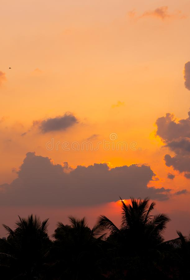 Fiery sunset with darkness forceground in asia. Siem reap city, Cambodia stock images