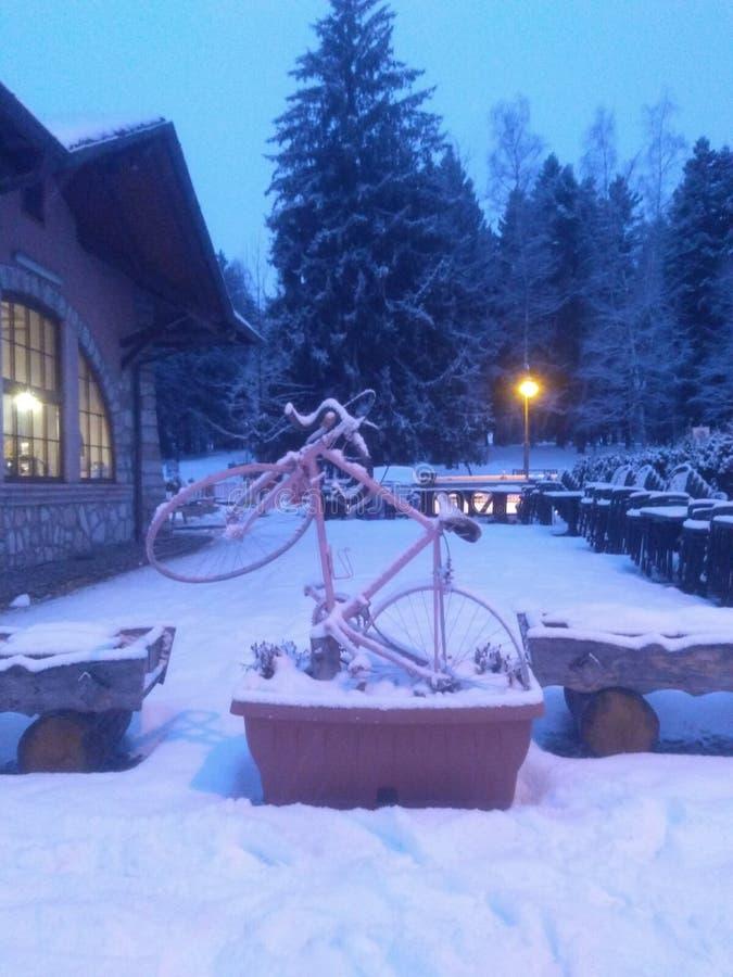Fiets die in sneeuw wordt behandeld royalty-vrije stock foto's