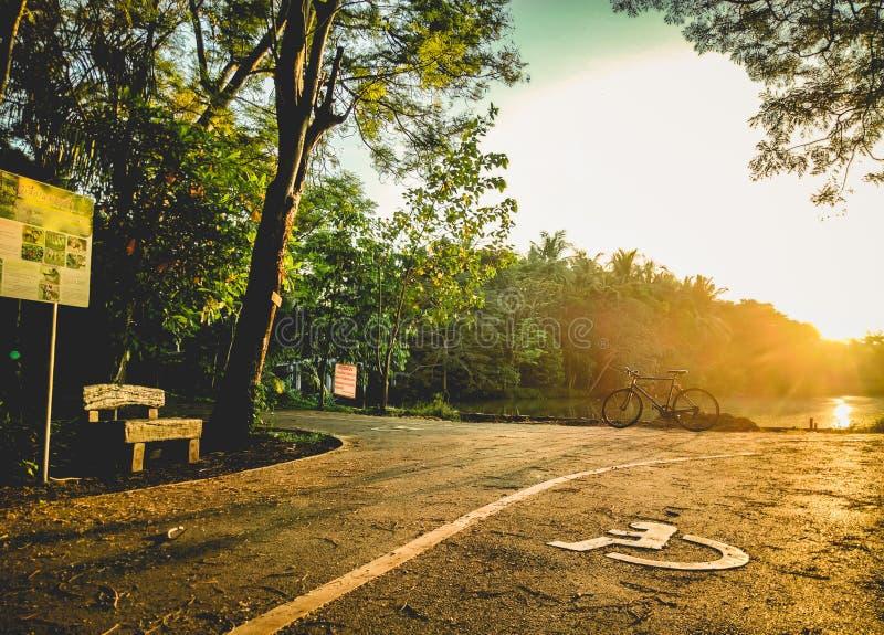 28 - Fiets het Cirkelen op zon glanst in de avond stock afbeelding