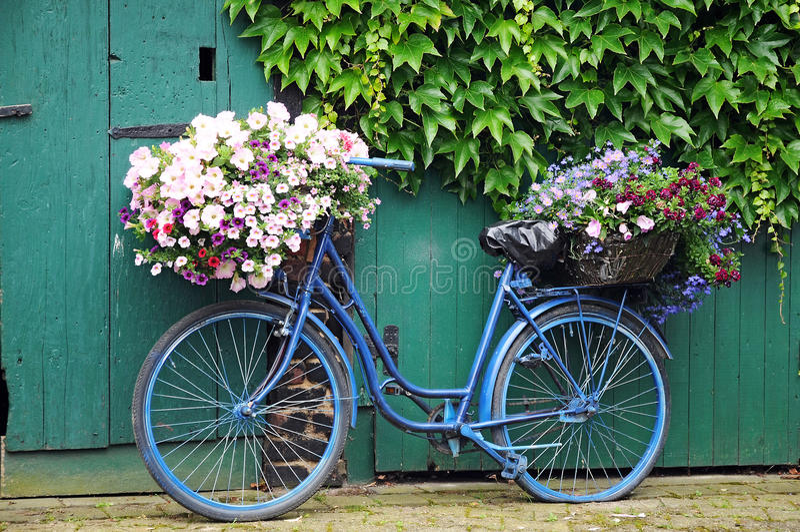 Fiets met bloemen stock afbeeldingen