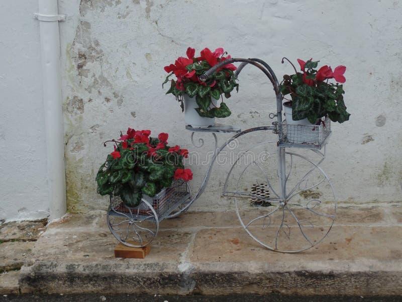 Fiets met het hangen van installaties voor een vergoelijkte bakstenen muur in Alberobello, Italië royalty-vrije stock afbeeldingen