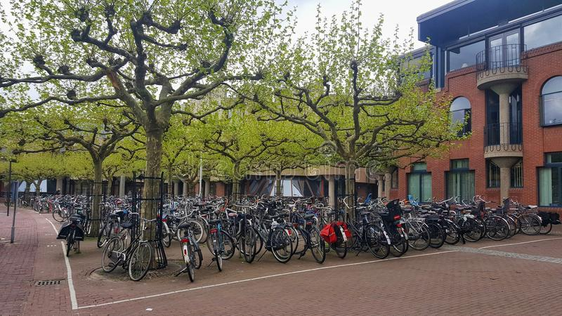 Fietsenparkeerterrein, Universiteit van Leiden royalty-vrije stock foto