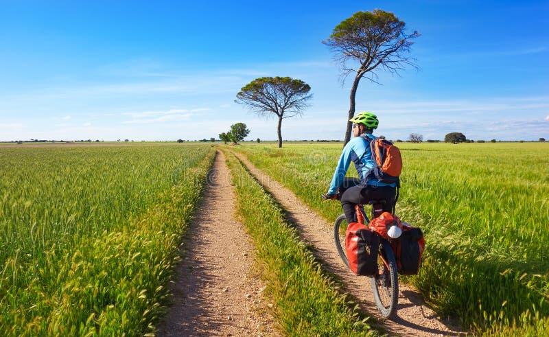 Fietser door Camino DE Santiago in fiets stock fotografie