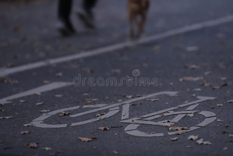 fietspad in vroeg ochtendlicht met jogger en hond op stedelijke achtergrond - stock foto